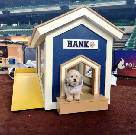 Hank_in_his_new_mobile_Dog_House_2014-04-26_08-27